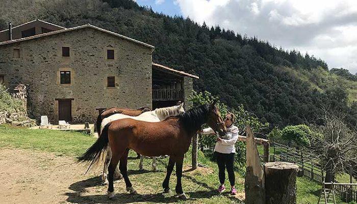 cavalls-4.jpg