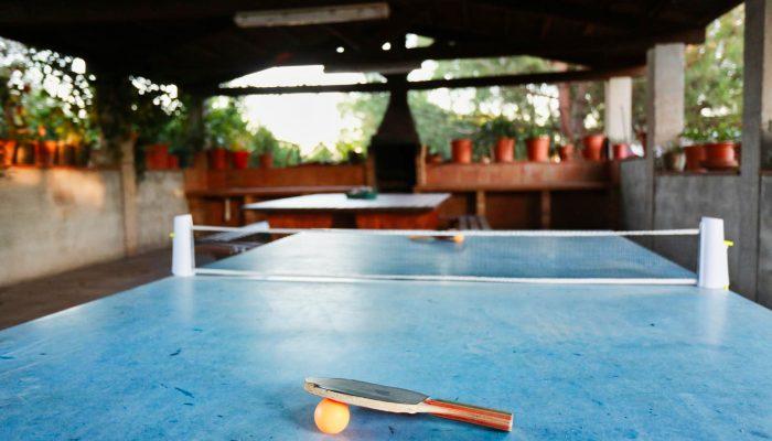 ping-pong-20.jpg